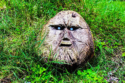 wood carving of a face set in the grass